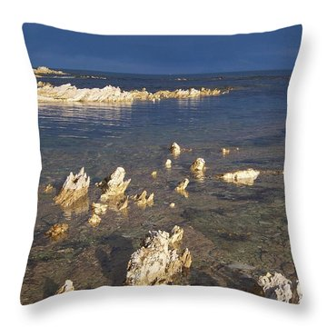 Throw Pillow featuring the photograph Kaikoura Coast by Peter Mooyman