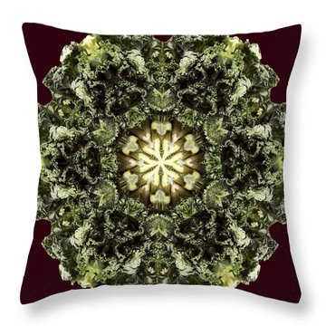 K A L E..idoscope Throw Pillow