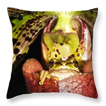 Kangaroo Frog Throw Pillow by Jean Noren