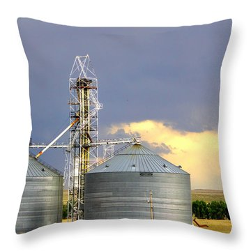 Throw Pillow featuring the photograph Kansas Farm by Jeanette C Landstrom