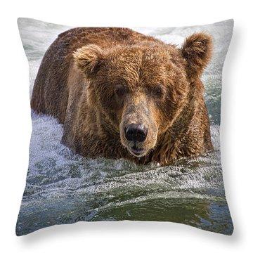 Katmai Bear Throw Pillow