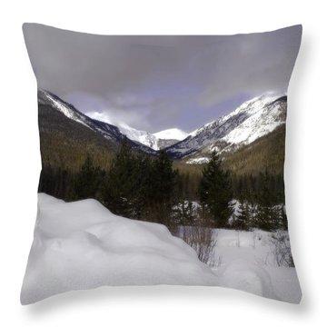 Kawuneeche Valley - Rocky Mountain National Park Throw Pillow by Ellen Heaverlo