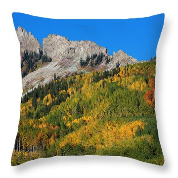 Throw Pillow featuring the photograph Kebler Pass by Jim Garrison