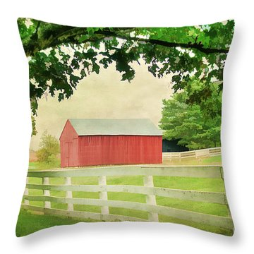 Kentucky Country Side Throw Pillow by Darren Fisher