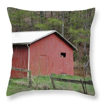Kentucky Life Throw Pillow by Tiffany Erdman