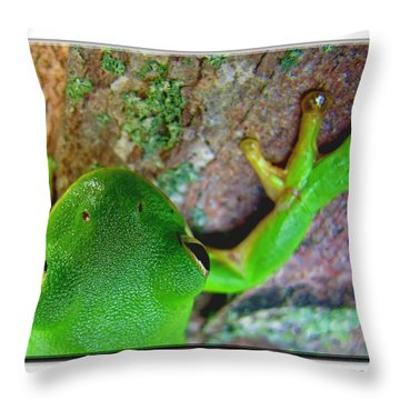 Throw Pillow featuring the photograph Kermit's Kuzin by Debbie Portwood