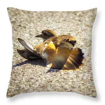 Killdeer Broken Wing Act Throw Pillow
