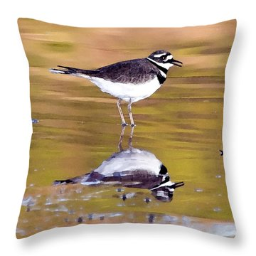 Killdeer Reflection Throw Pillow by Betty LaRue