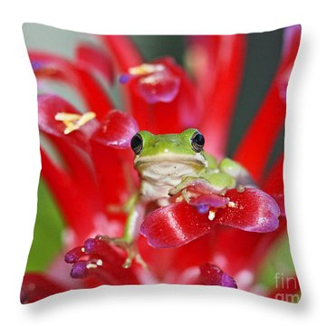 Kiss A Prince Frog Throw Pillow