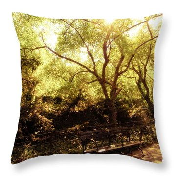 Kissed By The Sun - Central Park - New York City Throw Pillow by Vivienne Gucwa