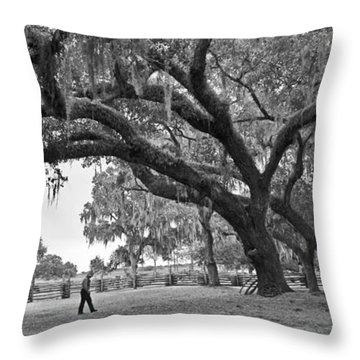 1860 Kissimee Cow Camp  4  Bw Throw Pillow by Larry Nieland