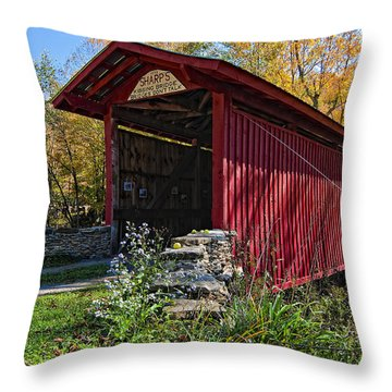 Kissing Bridge 2 Throw Pillow by Steve Harrington