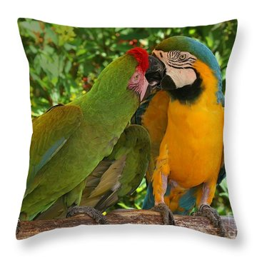 Kissy Kissy Mccaws Throw Pillow by Sabrina L Ryan