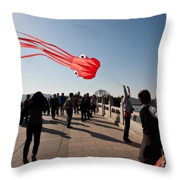 Kite Aloft Throw Pillow by Mike Reid