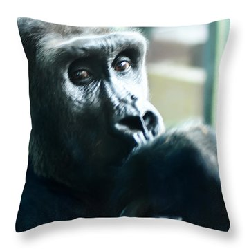 Kivu The Gorilla Throw Pillow by Bill Cannon