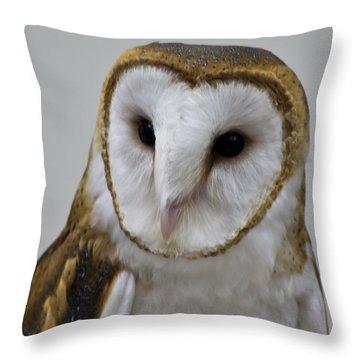 Knowing Barn Owl Throw Pillow by LeeAnn McLaneGoetz McLaneGoetzStudioLLCcom