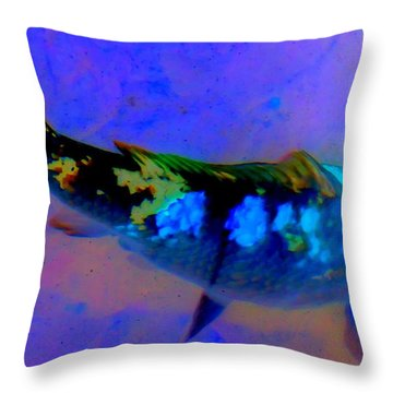 Koi Story One A Throw Pillow by Randall Weidner