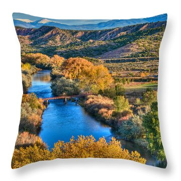 La Bolsa Throw Pillow