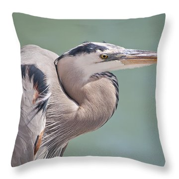 La Garza Throw Pillow by Steven Sparks