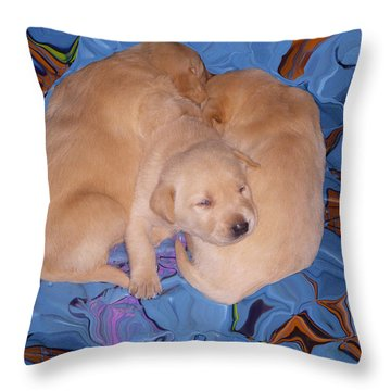 Lab Pups 2 Throw Pillow by Aimee L Maher Photography and Art Visit ALMGallerydotcom