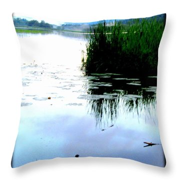 Throw Pillow featuring the photograph Lac William Quebec by Danielle  Parent