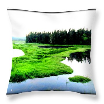 Lac Williams Quebec  Throw Pillow by Danielle  Parent