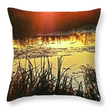 Throw Pillow featuring the photograph Lacassine Sundown by Lizi Beard-Ward