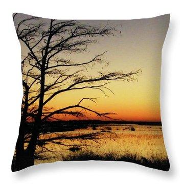 Throw Pillow featuring the photograph Lacassine Sunset by Lizi Beard-Ward