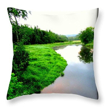 Throw Pillow featuring the photograph Lacwilliam  St-ferdinand Quebec by Danielle  Parent