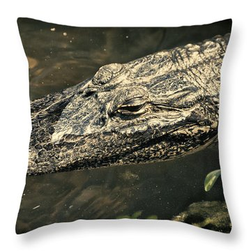 Lady Alice Queen Of The Lake Throw Pillow by Joan Carroll