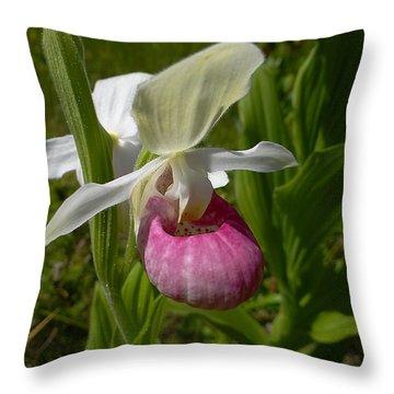 Throw Pillow featuring the photograph Pink Lady Slipper - Cypripedium Acaule Ait. by Blair Wainman