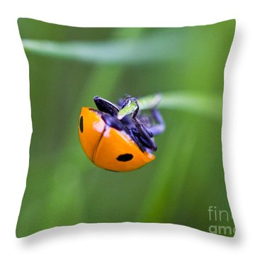 Ladybug Topsy Turvy Throw Pillow by Donna Munro