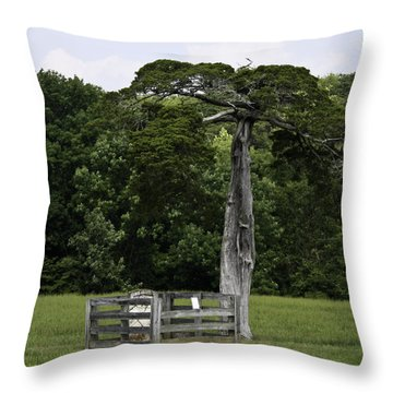 Lafayette Meeks Cemetery Appomattox Virginia Throw Pillow by Teresa Mucha