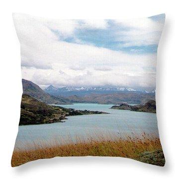 Lago Del Toro - Torres Del Paine National Park Throw Pillow by Ronald Osborne