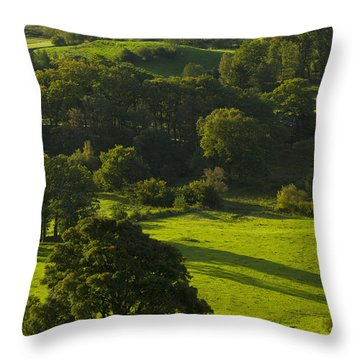 Lake District National Park, Cumbria Throw Pillow by Axiom Photographic