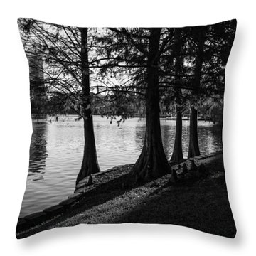 Throw Pillow featuring the photograph Lake Eola Water Edge by Lynn Palmer