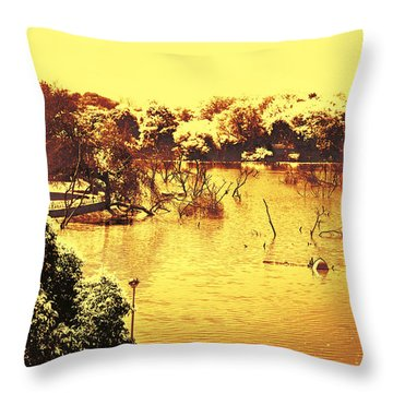 Lake In India Throw Pillow
