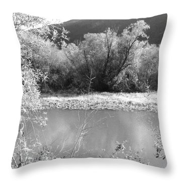 Lakeside Mountain View Throw Pillow