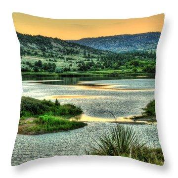 Lakeside View Throw Pillow