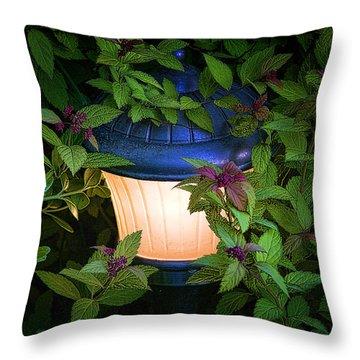 Landscape Lighting Throw Pillow