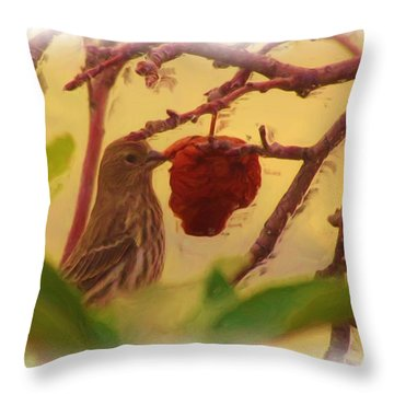 Last Apples Are Best Throw Pillow by Feva  Fotos