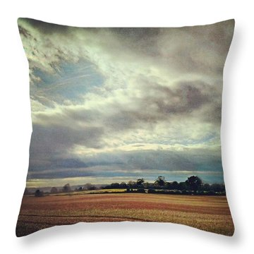 Last Light Throw Pillow by Vicki Field