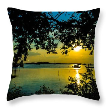 Last Patroll Tonight Throw Pillow by Shannon Harrington