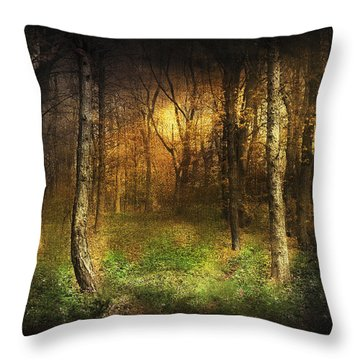 Last Rays Throw Pillow by Svetlana Sewell