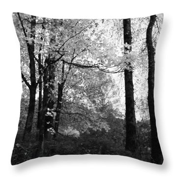 Throw Pillow featuring the photograph Lasting Leaves by Kathleen Grace