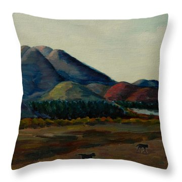 Late Afternoon, Peru Impression Throw Pillow