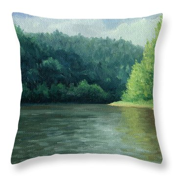 Throw Pillow featuring the painting Later That Day by Joe Winkler