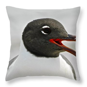 Throw Pillow featuring the photograph Laughing Gull Looking Left by Eve Spring