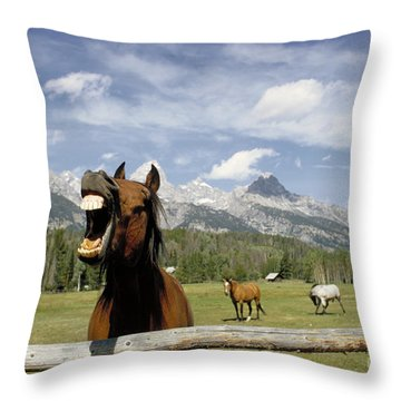 Laughing Horse Throw Pillow by Porterfld and Chickerng and Photo Researchers
