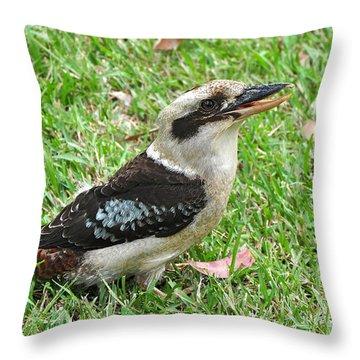 Laughing Kookaburra Throw Pillow by Kaye Menner